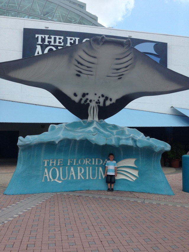 """On one of the last days, we decided to visit the Florida Aquarium in Tampa.  Brayden's response was """"mom, I'm disappointed.  Where are the whale sharks and hammerheads?"""""""