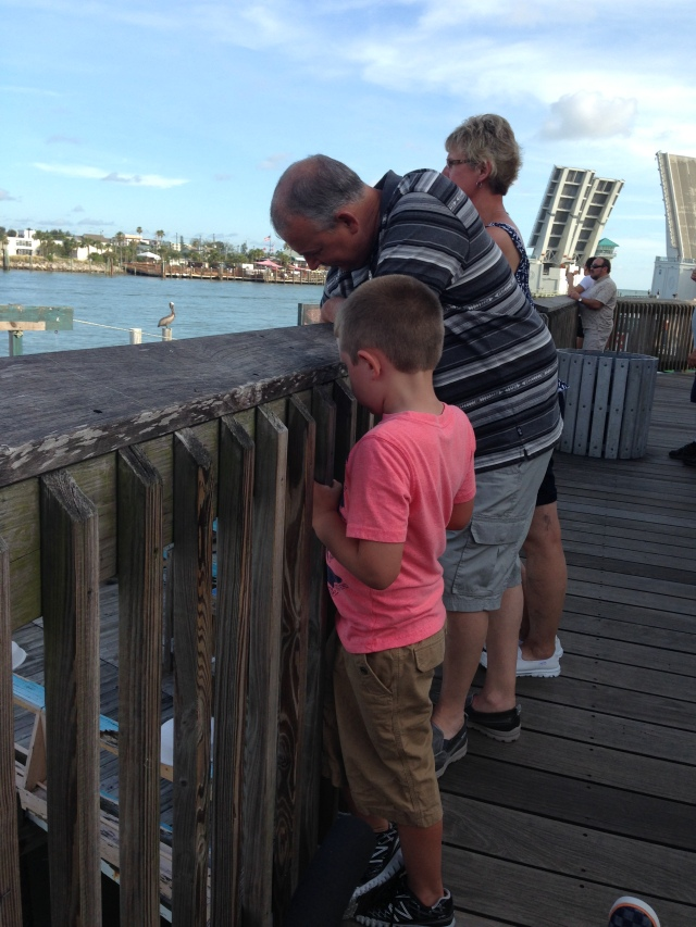 Looking at all the fish by the docks with Grampy and Grammy.
